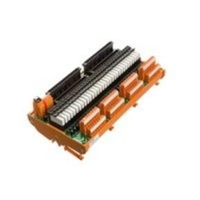 Интерфейс RS винтовой RS/FTA/C300/32DI/24VDC/S