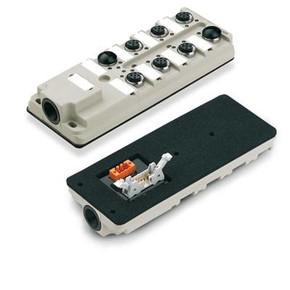 Концентратор M12 сигналов пассивный распределитель (Ввод через заднюю стенку) SAI/8/B/4P/M12/F10