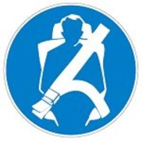 Знак безопасности предписывающий Brady 25 мм, b-7541, Ламинация, pic 266, Полиэстер, 250 шт